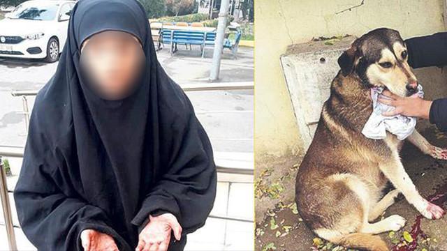 Sokak hayvanlarını kesen caniye suçüstü