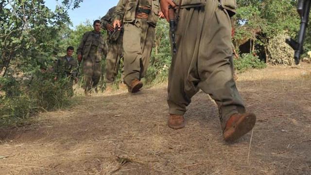 PKK'da çözülme devam ediyor ! 4 terörist daha teslim oldu