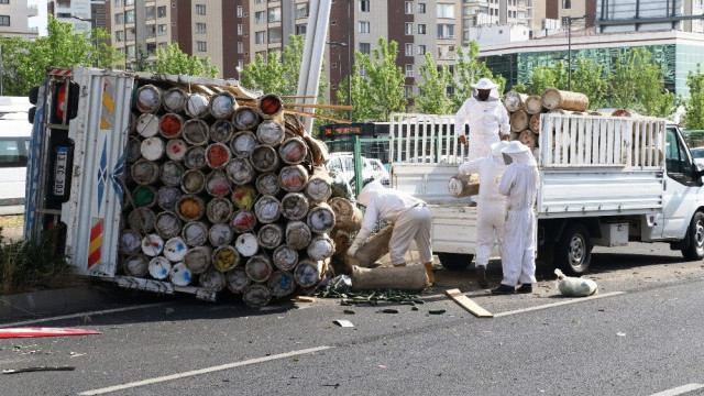 Diyarbakır'da kaza sonrası arı saldırısı alarmı