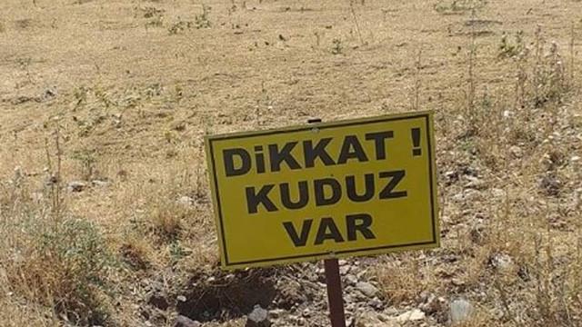 Köyde kuduz alarmı ! Karantinaya alındı
