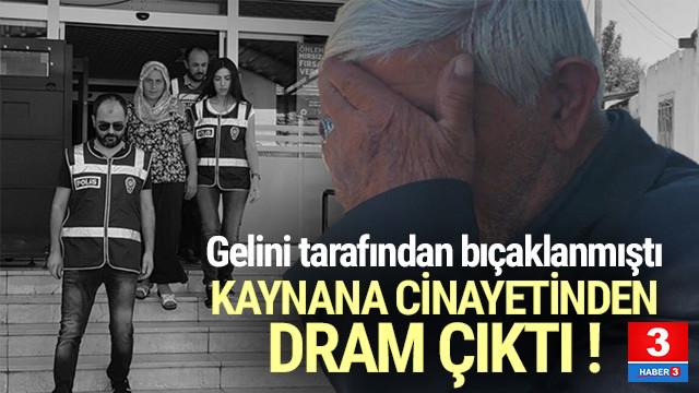 Erzican'da gelin-kaynana kavgası kanlı bitti