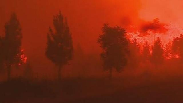 Portekiz felaketi yaşıyor !