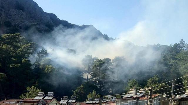 Tatil cennetinde orman yangını !  Ekipler müdahale ediyor