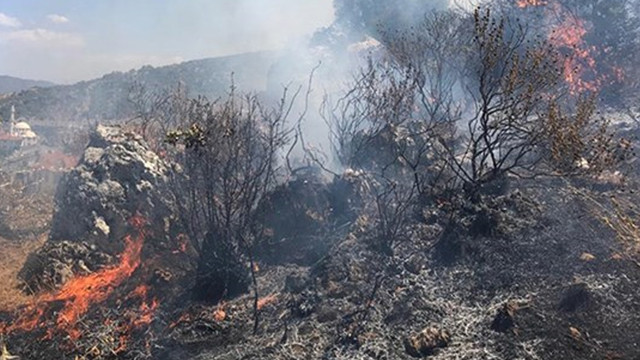 Önce İzmir şimdi de Fethiye! Alevler ormanı sardı