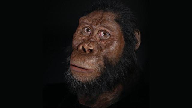 Bilim insanları sonunda ''ilk insanı'' buldu