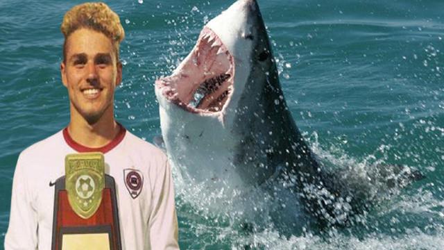 Ünlü futbolcuyu köpekbalıkları parçaladı!