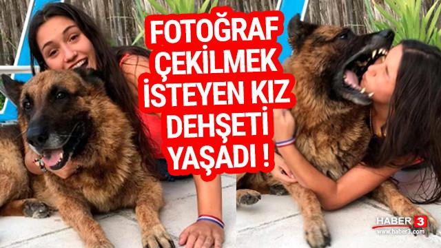 Alman kurduyla fotoğraf çekilmek isteyen kız felaketi yaşadı !