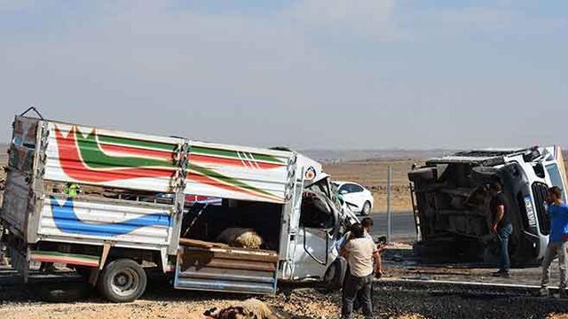 Siverek'te kamyonlar çarpıştı: 3 yaralı