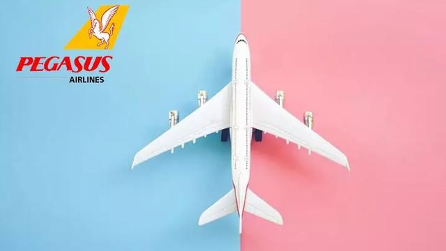 Uçak bileti hattı ile doyasıya uçun