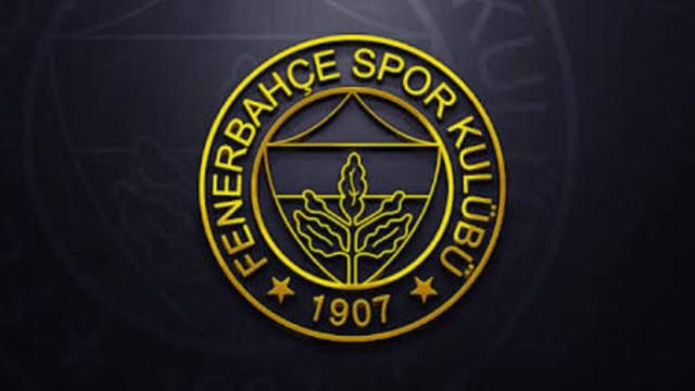 Fenerbahçe'de şok sakatlık! Garry Rodrigues, Ankaragücü maçında yok