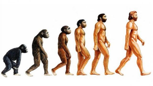 MEB evrimi eğitim takviminden çıkardı!