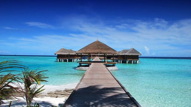 130 bin kişi ücretsiz Maldivler tatiline inandı