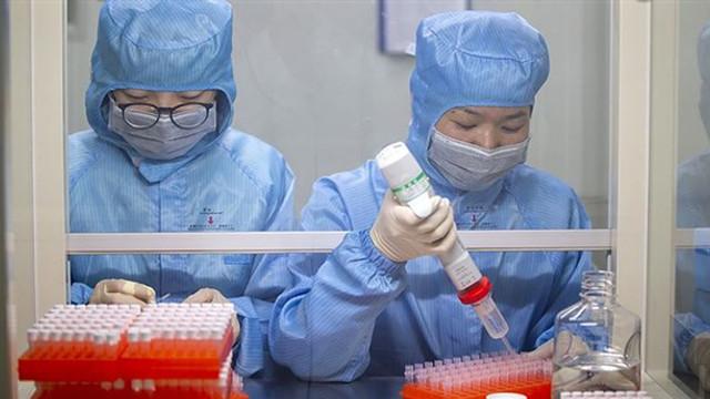 Koronavirüsten ölenlerin sayısı 11 bini geçti
