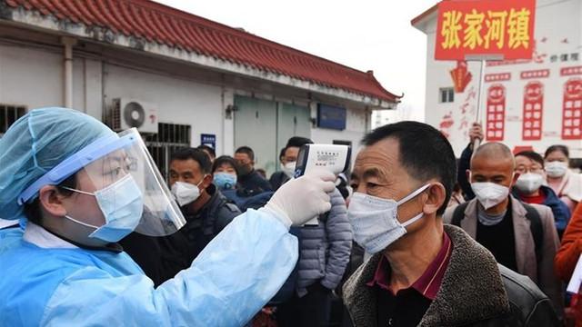 Şimdi de hantavirüs can aldı! Çin'de 1 kişi öldü!