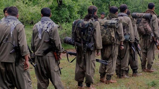 Terör örgütü PKK'ya koronavirüs darbesi
