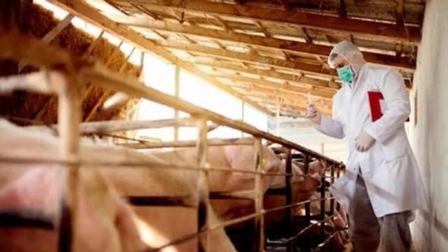 Çin'de ikinci bir virüs salgını mı var ?