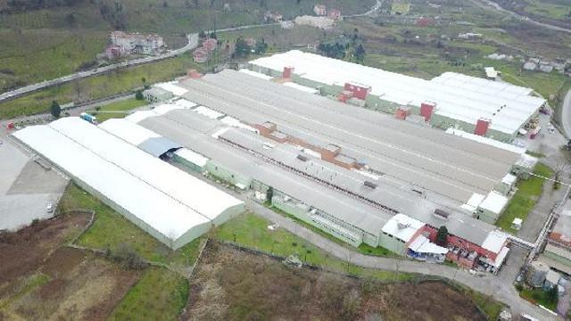 Fabrikada virüs tespit edildi, üretim durduruldu