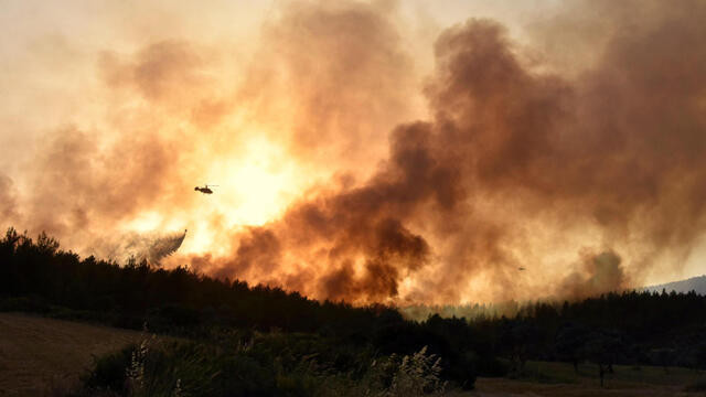 Muğla'daki orman yangınında 'sabotaj' şüphesi