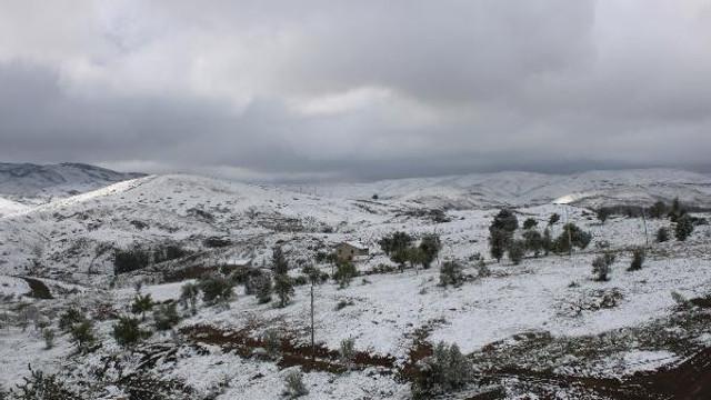 Fotoğraf Türkiye'den! Mayıs sonunda kar yağdı