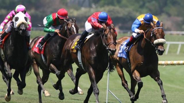 At yarışlarının başlayacağı tarih açıklanıyor