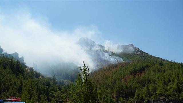Antalya'da 3 hektar alan kül oldu