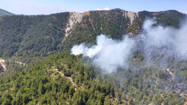Hatay'da ormanlık alanda yangın