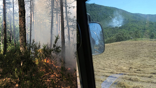 Çanakkale'de yangın! 2 dönüm arazi zarar gördü
