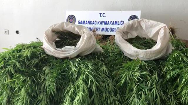 Hatay'da uyuşturucu operasyonu: 1 kişi gözaltına alındı