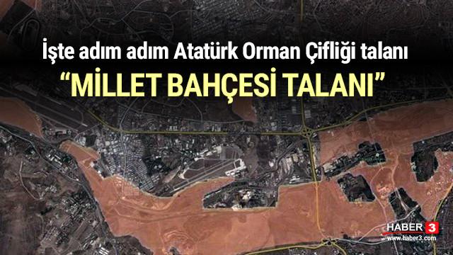 İşte adım adım Atatürk Orman Çifliği talanı