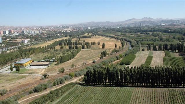 Ayasofya kararı, Atatürk Orman Çiftliği için umut oldu