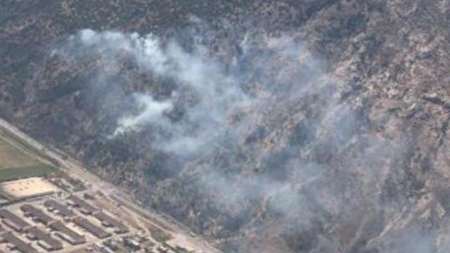 Aydın Söke'de orman yangını