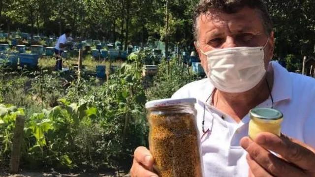Kilosu 7-8 bin TL olan arı sütüne yoğun ilgi!