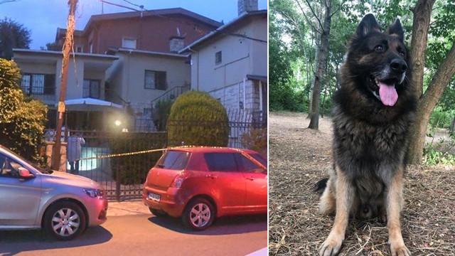 Eşini ısıran köpeği silahla öldürdü