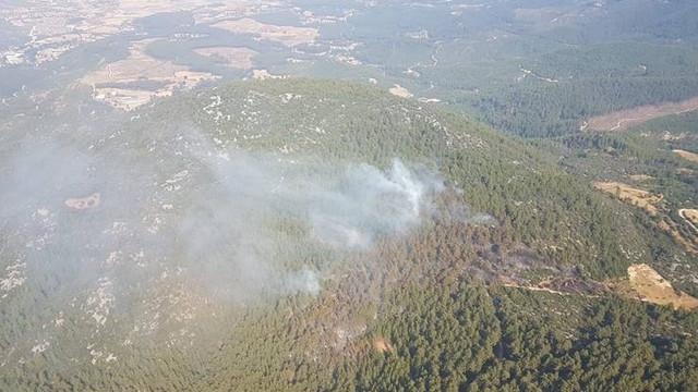 Burdur'da 3 hektarlık ormanlık alan kül oldu!