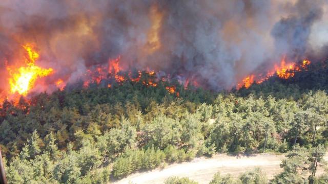 Çanakkale'de orman yangını! Dumanlar gökyüzünü kapladı