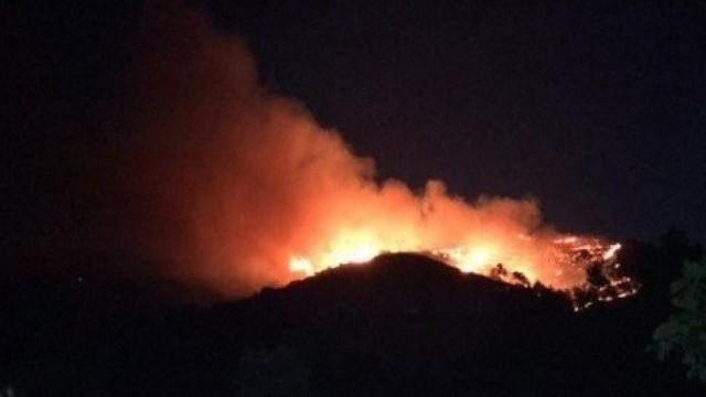 Ukrayna'da orman yangını: 4 ölü