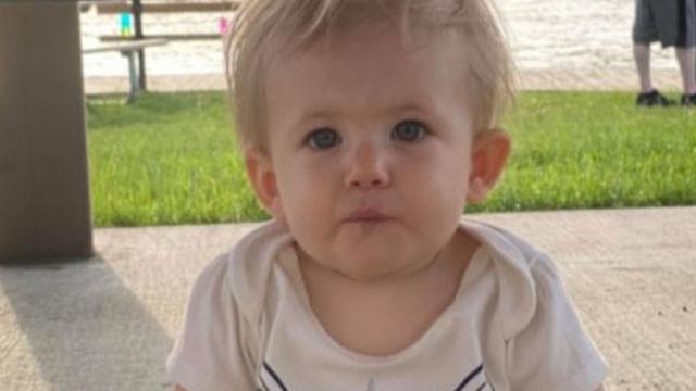 ABD'de pitbull dehşeti: 17 aylık bebeği parçalayarak öldürdü!