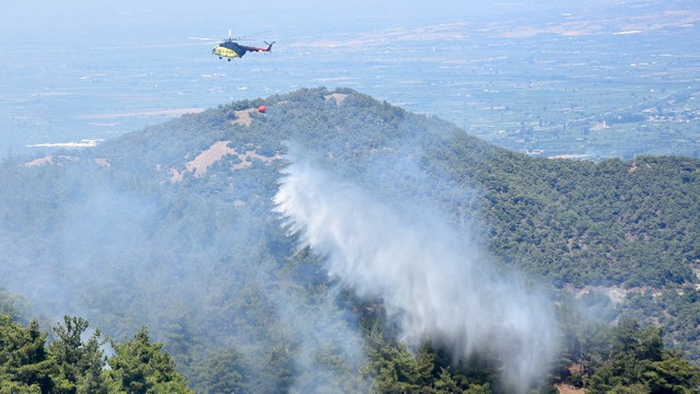 Bakan açıkladı: 6 orman yangını kontrol altında