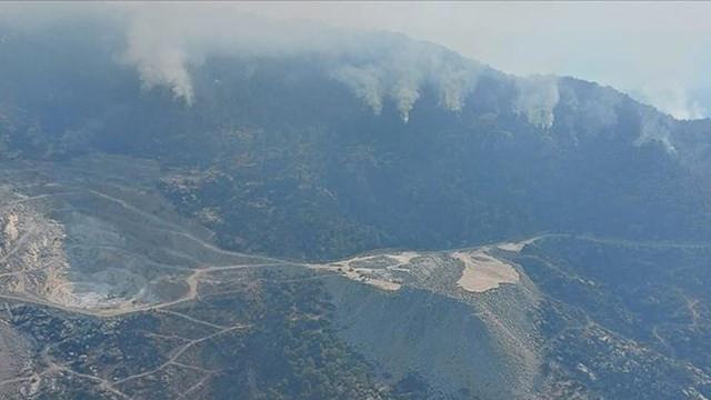 Aydın'daki orman yangınıyla ilgili bir işi tutuklandı