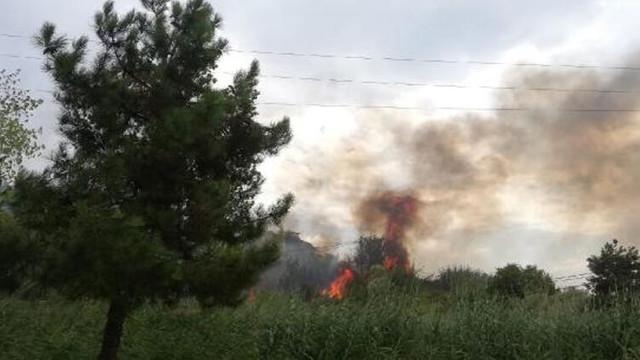 Büyükçekmece'de yangın paniği