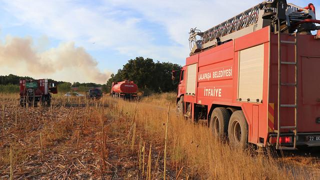 Bulgaristan'daki yangın Türkiye'ye yaklaşıyor