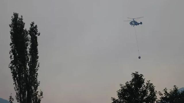 Adana'daki orman yangını söndürülemedi!