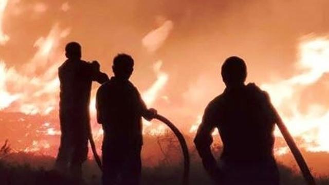 Gökçeada'da korkutan yangın