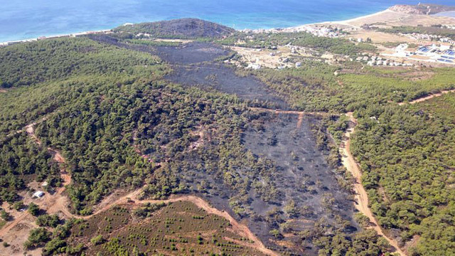 Türkiye'nin cennetinde ''denize nazır'' orman yangını!