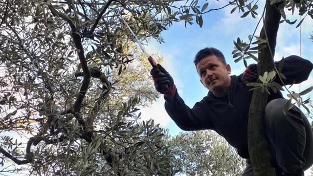 Aktarlarda cep yakan yakıyor, Bursa'da bedava dağıtılıyor