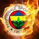 Fenerbahçe'nin yeni teknik direktörünü açıkladılar !