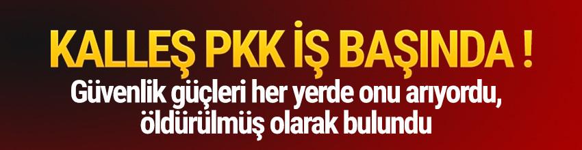 PKK kaçırdığı muhtarı infaz etti