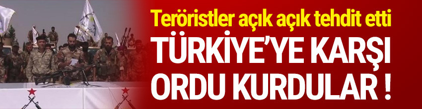 Türkiye'ye karşı ordu kurdular !