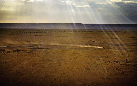 Ayşe Arman Afrikada