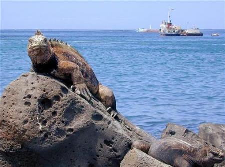 Evrim Teorisi in doğduğu ada